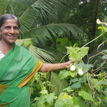 Kerala Gandhi Smarak Nidhi 10