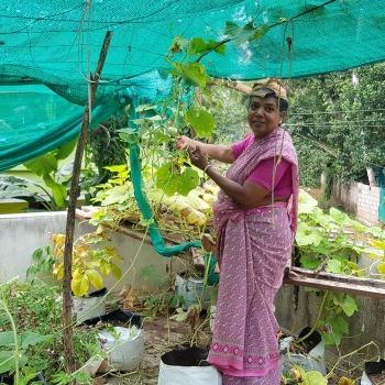Organic Farming 7