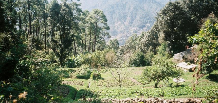 Lakshmi Ashram 4