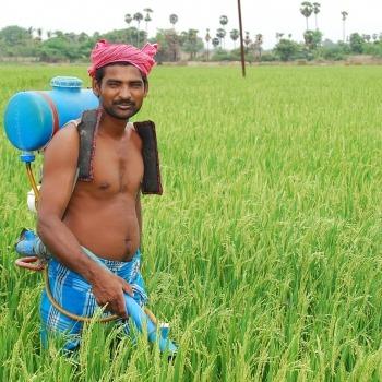 Rural Livelihoods 9