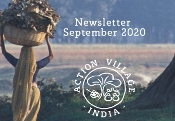 Newsletter September 2020 5